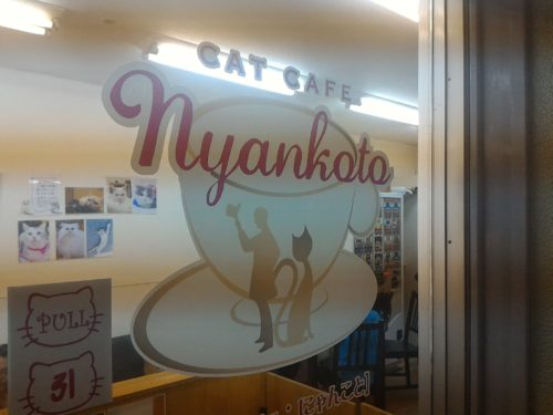 cat-cafe-nyankoto.jpg